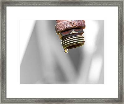 The Foundation Of Life Framed Print by Nick Mares