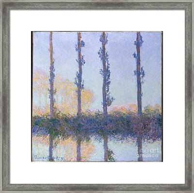 The Four Trees Framed Print by Celestial Images