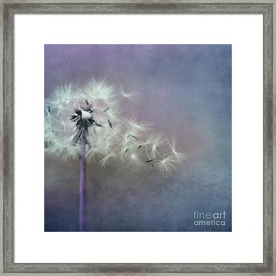 The Four Winds Framed Print