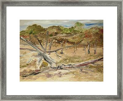 The Fourty-niner Highwaytrees Framed Print by Edward Wolverton