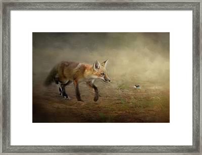 The Fox And The Butterfly Framed Print by Jai Johnson