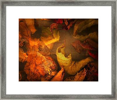 The Frail And Singular Fortress Of The Dissolving Self Framed Print by Peter Ciccariello