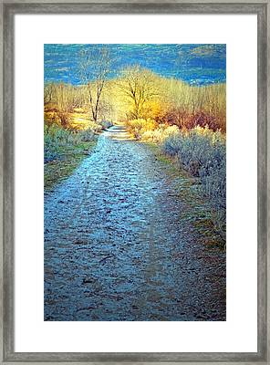 The Frosty Trail Framed Print