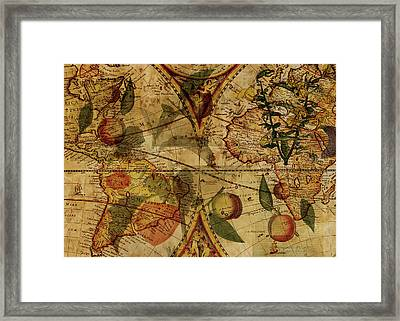 The Fruit Look Framed Print by Sarah Vernon