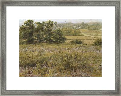 The Furze Field Framed Print