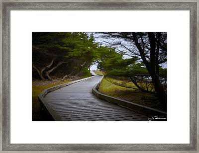 The Fuzzy Path To Nowhere Framed Print