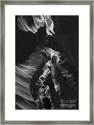 The Gallery Framed Print by Jim Chamberlain