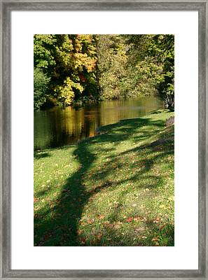 The Game Of Shadows Framed Print
