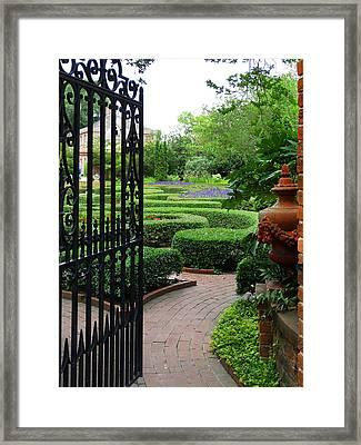 The Garden 1 Framed Print
