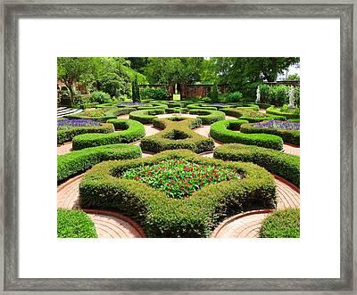 The Garden 2 Framed Print