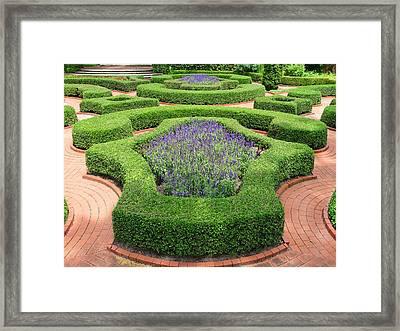 The Garden 9 Framed Print by Mike McGlothlen