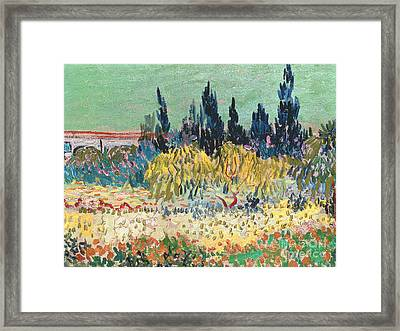 The Garden At Arles  Framed Print by Vincent Van Gogh