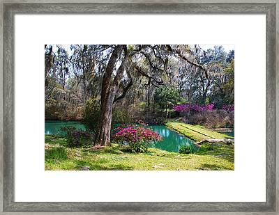 The Garden In The Abbey Framed Print by Susanne Van Hulst