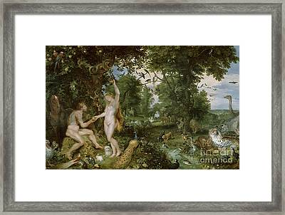 The Garden Of Eden With The Fall Of Man Framed Print by Jan Brueghel and Rubens