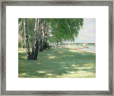 The Garden Of The Artist In Wannsee Framed Print by Max Liebermann