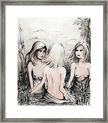 The Garden Pool Framed Print