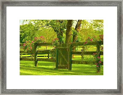 In The Valley Of Love Framed Print