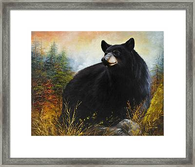 The Gatekeeper Framed Print