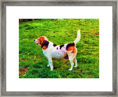 The Gentle Leader Standing Tall Framed Print