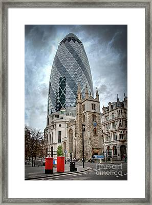 The Gherkin Framed Print by Donald Davis