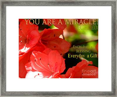 The Gift Framed Print by Gardening Perfection