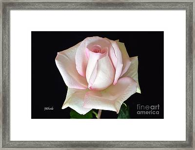 The Gift Framed Print by Jeannie Rhode