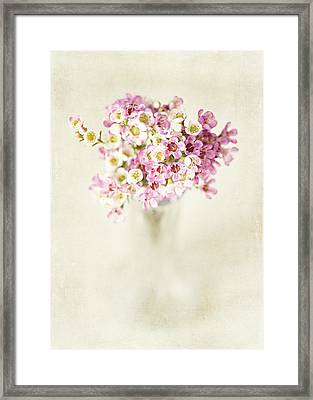 The Gift Framed Print by Lisa Russo