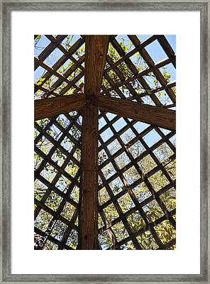 Framed Print featuring the photograph The Gift Of Nature by John Knapko