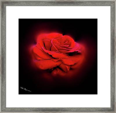 The Gift Framed Print by Wild Thing