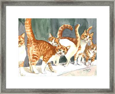 The Ginger Gang Framed Print