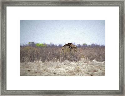 The Giraffe Da Framed Print by Ernie Echols