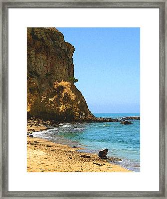 The Girl At Abalone Cove Framed Print