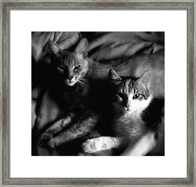 The Girls Framed Print by Dorothy Berry-Lound