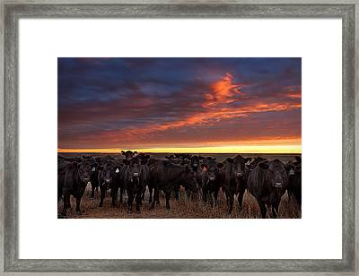 The Girls Framed Print by Thomas Zimmerman