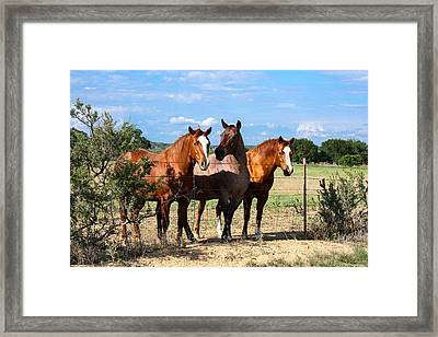 The Girlz Framed Print