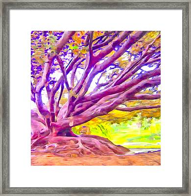 The Giving Tree 2 Framed Print