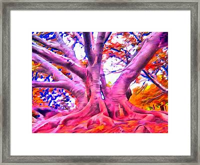 The Giving Tree 3 Framed Print