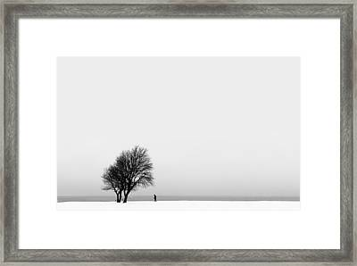 The Giving Tree Framed Print by Marcus Karlsson Sall