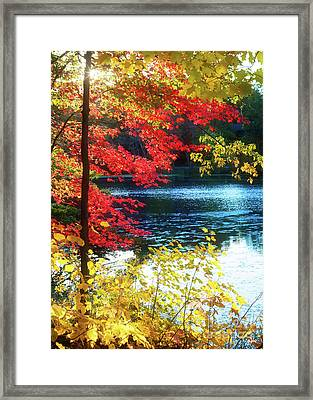 The Glory Of A New England Autumn Framed Print