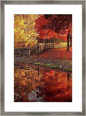 The Glory Of Autumn Framed Print