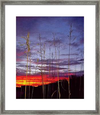 Framed Print featuring the photograph The Glow by John Hartman