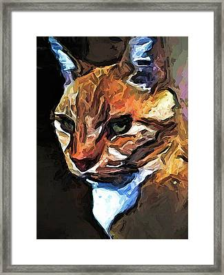 The Gold Cat With The Stage Presence Framed Print