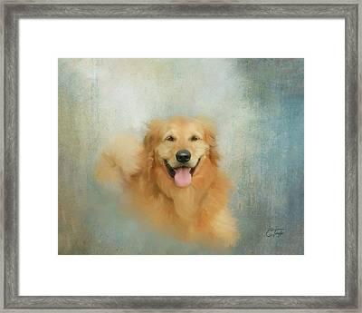 The Golden Framed Print