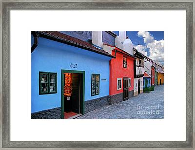 The Golden Lane Framed Print by Mariola Bitner