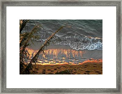 The Golden Moment IIi Framed Print