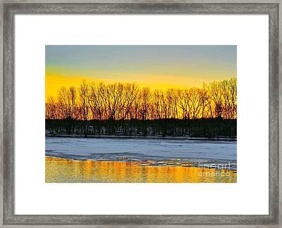 The Golden Pond Framed Print by Robert Pearson
