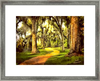Framed Print featuring the photograph The Golden Road by Kathy Tarochione