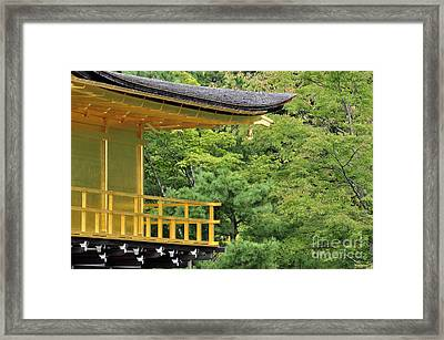 The Golden Temple Framed Print by Andy Smy