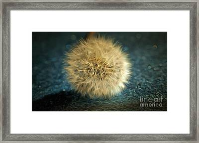 The Golden Wish Framed Print by Krissy Katsimbras
