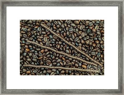 Framed Print featuring the photograph The Good Life 1 by Werner Padarin